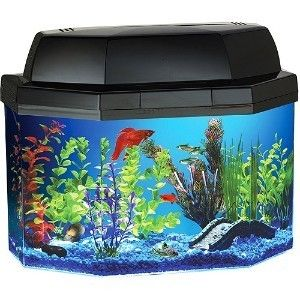 Hawkeye 5 Gallon Semi Hexagon Fish Tank Aquarium Kit FREE SHIP Light