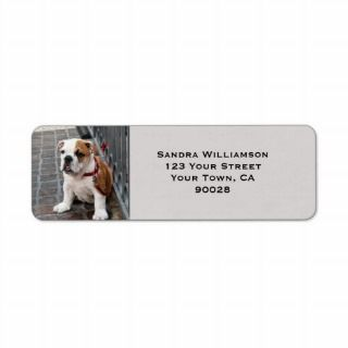 Cute dog return address labels