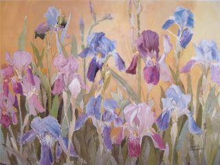 Iris Flowers J KRASNANSKY Limited Print Art Signed