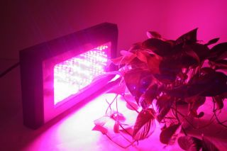 QUALITY 240W LED GROW LIGHT PLANT LAMP FOR PLANT INCREASE YIELD aa