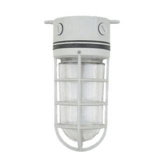 Outdoor Ceiling Lighting Fixture OT3009 At