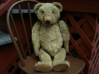 Large Size Antique William J Terry Teddy Bear Super Old Vintage