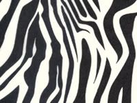 Zebra Stripe Black White Tissue Paper Bulk 20 XL Shts