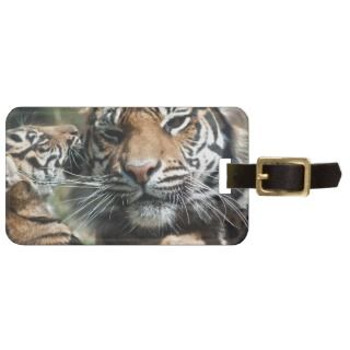 Tiger Cub with Mom Tags For Bags