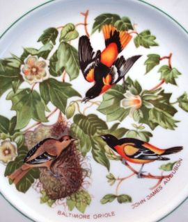 Baltimore Oriole Collector Plate John James Audubon Bird Atlas China