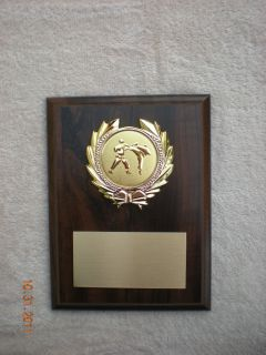 Karate (Martial Arts) Or SPORT, Award Plaque 6x8 Trophy FREE custom