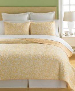 Martha Stewart Aspendale Butter Full Queen Cotton Quilt Shams Set