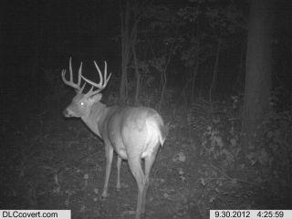 2013 Iowa Whitetail Hunt Full Season Gun or Bow