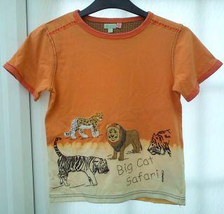 Monsoon Boys Orange Beige Big Cat Design Cotton T Shirt Aged 6 7 Yrs