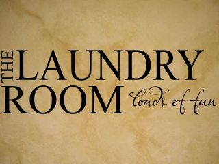 Laundry Room Loads of Fun Vinyl Wall Quote Decal New