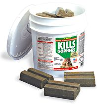 Gopher Killer Bar Bait Rodent Control 10 Lawn Golf
