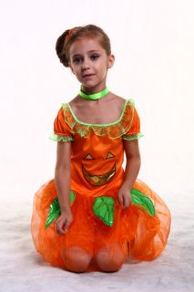 New Light Up Pumpkin Fairy Girl Kid Child Halloween Costume Set Large