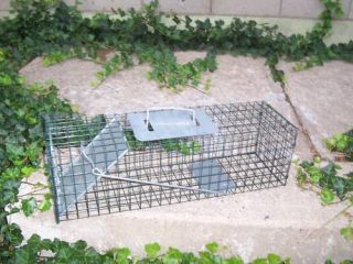 New Small Catch Release Live Animal Cage Trap