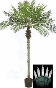 Artificial Phoenix Palm Tree in Black Pot & Holiday Christmas Lights