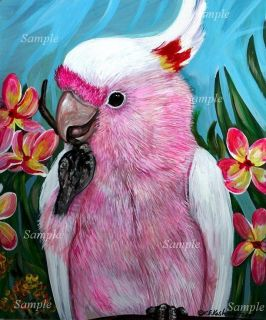 MITCHELLS COCKATOO GICLEE Painting Pink PARROT Bird Jungle Pet