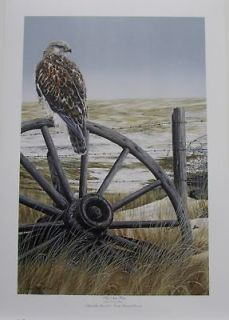 Darren HALEY Ducks Unlimited 2010 Artist of Year Print Ferruginous