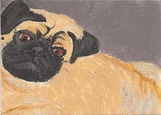 Cute Original ACEO Fawn Pug Dog Art ~ Darlene Howell