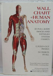 WALL CHART OF HUMAN ANATOMY 24 CHARTS 12 X 17 1/2