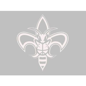 New Orleans Hornets Wincraft Decal 18x18