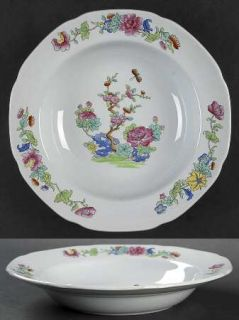 Spode Willis (Y2684) Rim Soup Bowl, Fine China Dinnerware   New Stone, Indian Tr