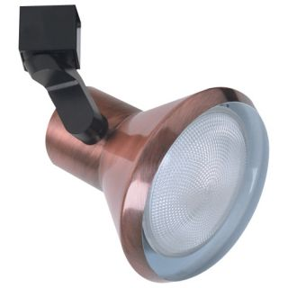 Elco Lighting ET658CP Track Light, Line Voltage PAR30 Solid PAR Classic Track Fixture Copper