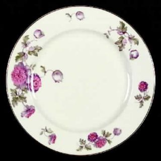 Heinrich   H&C 11898 Dinner Plate, Fine China Dinnerware   Senta Shape, Purple/P