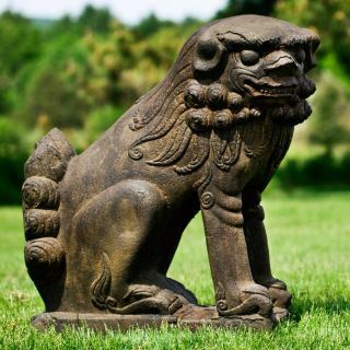 Campania International Temple Foo Dog Looking Right Garden Statue   Large   OR
