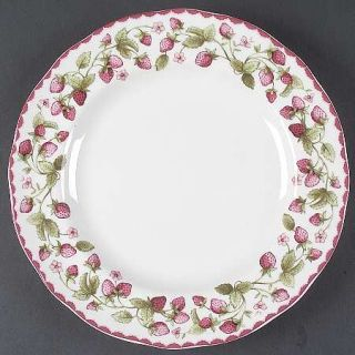 Biltmore for Your Home Harvest Berry Dinner Plate, Fine China Dinnerware   Straw